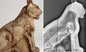 The wooden coffin of a mummified cat [left] and a CT scan revealing the ancient cat skeleton inside.