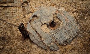 The wooden wheel unearthed at Must Farm.