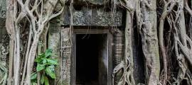 Door surrounded by roots of Tetrameles nudiflora in the Khmer temple of Ta Phrom, Angkor temple complex, located today in Cambodia. (CC BY-SA 3.0)