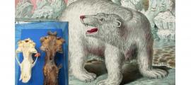 Enormous Skull Found in Alaska May Belong to the Legendary King Bear of Inuit Mythology