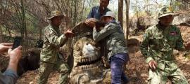 Makara statue found in Phnom Kulen National Park  Source: Ministry of the Environment / Khmer Times