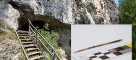 50,000-Year-Old Needle Found in Siberian Cave AND It Was Not Made by Homo Sapiens