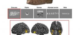 Experts, using neurosciences, study the human brain's reaction to ancient engravings. Source: E. Mellet et al. The Royal Society Publishing / CC BY 4.0