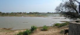 Bed of Ghaggar River near Hanumangarh. Researchers claim this is the ancient Saraswati River. Source: Bharat Jhunjhunwala / CC BY-SA 2.0.