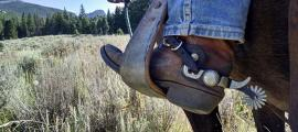 A cowboy boot in a horse's stirrup.