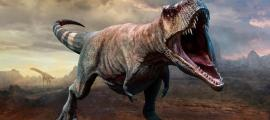 Tyrannosaurus Rex Likely Hunted in Packs - and There Were Billions of Them!