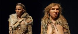 Humans and Neanderthals Have More in Common than Polar and Brown Bears