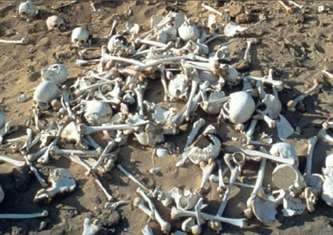The remains of Cambyses' Persian legendary army