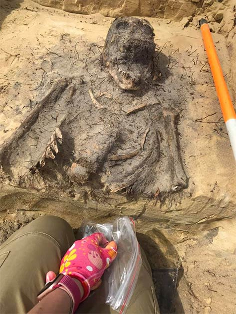 The find confirms archaeologists' theories and the speculations of locals that children were buried in a cemetery in the Church Mountains area. (Arkadia Firma Archeologiczna)