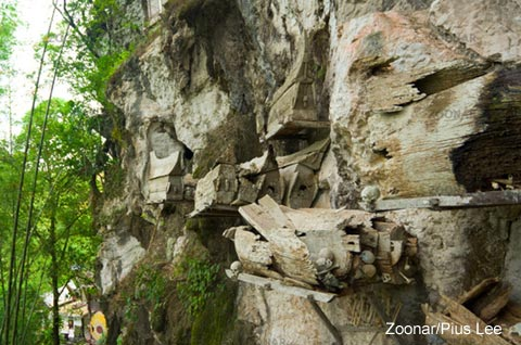 Wooden caskets hang from the cliffs - Toraja People
