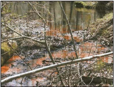 Picture of typical iron-bearing ground water emerging as a spring. The iron is oxidized to ferric hydroxide upon encountering the oxidizing environment of the surface. A large number of these springs and seeps on the flood plain provide the iron for bog iron deposits.