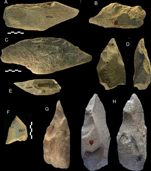 Fig 12 from the study showing unifaces and pointed tools made with elephant bones found at the Castel di Guido site, Rome, Italy. A-C: unifaces with a side scraper edge; D: pointed wedge (base is battered). E-F: pointed tools on bovid diaphysis fragments, catalogue numbers 326, 2807. G-H: pointed tools. (Plos One)