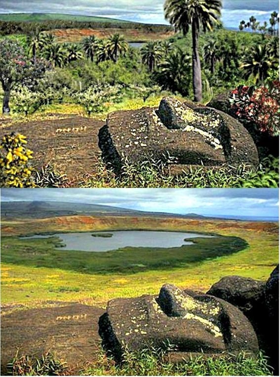 Comparison between vegetation on Easter Island in the past (top) and how it is today.